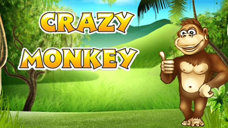 Новая игра Crazy Monkey